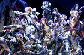 Musical Cats – Loge & Backstage